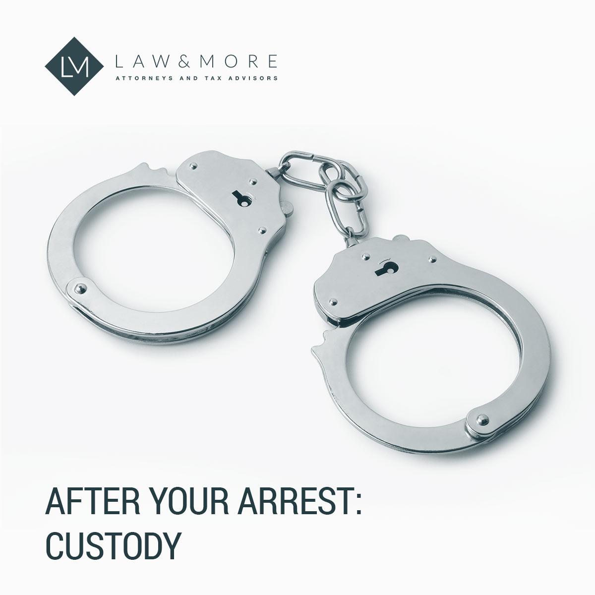После вашего ареста: содержание под стражей