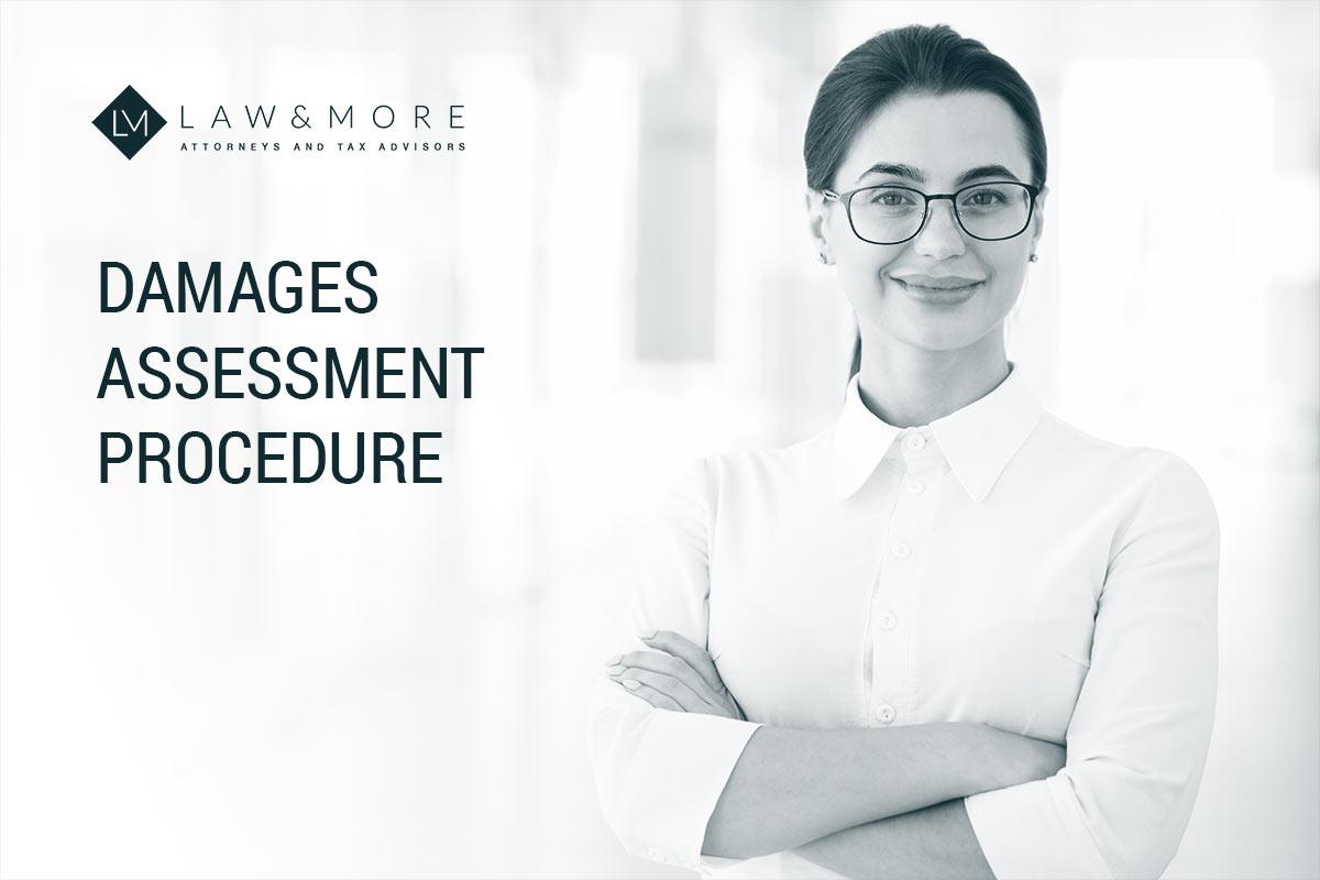 Damages Assessment Procedure